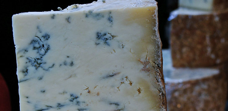 Blue Cheese750x368